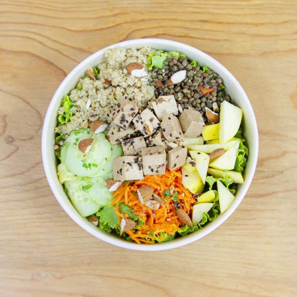 Salad Bøwl Vegetal 100%